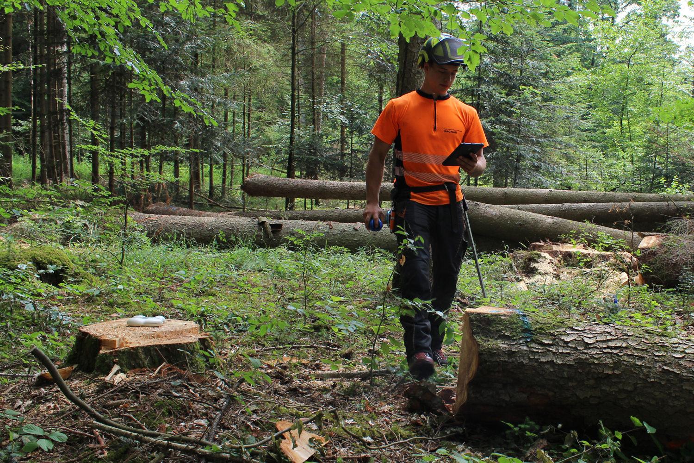 Forstverwaltung